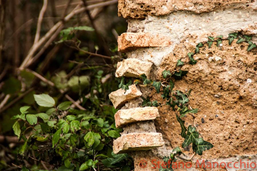 autunno-nelle-rovine-16-of-19