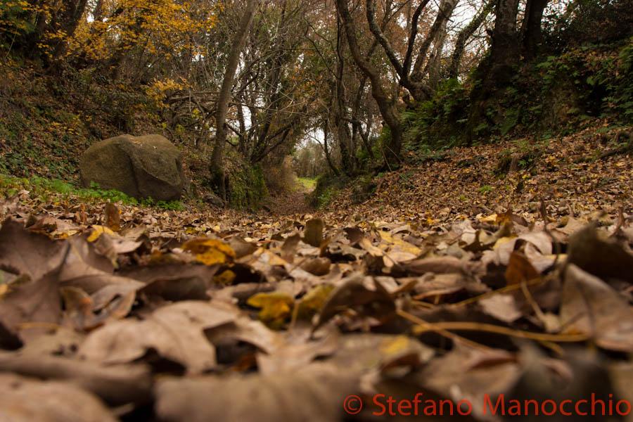 autunno-nelle-rovine-3-of-19