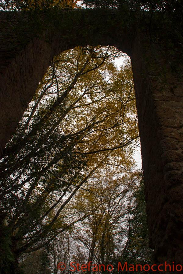 autunno-nelle-rovine-5-of-19