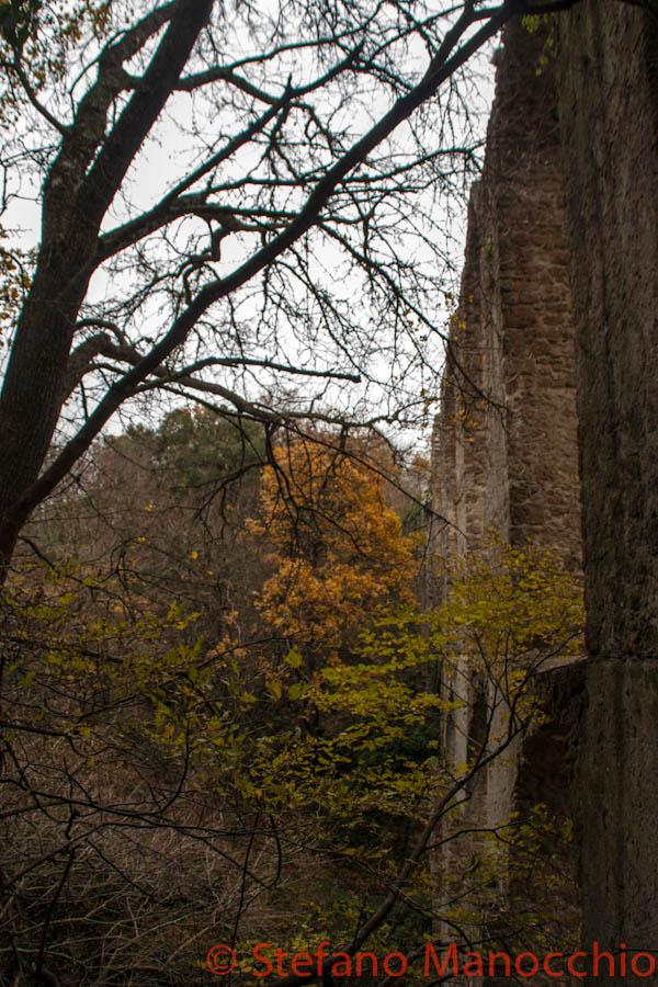 autunno-nelle-rovine-6-of-19