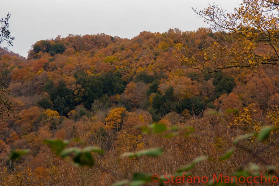 autunno-nelle-rovine-7-of-19