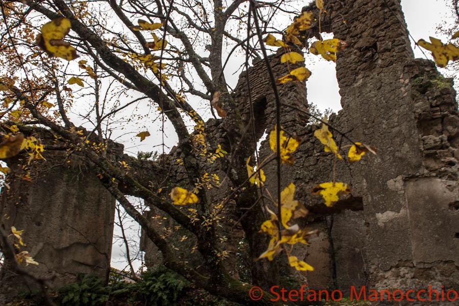 autunno-nelle-rovine-9-of-19