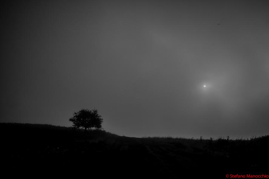 Nella nebbia (1 of 9)