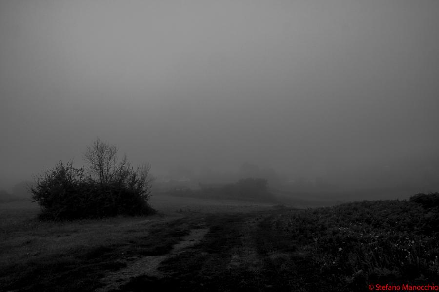 Nella nebbia (2 of 9)