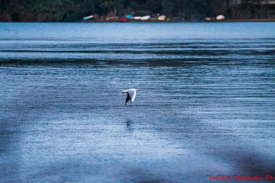 Giardino dei pescatori (50 of 70)