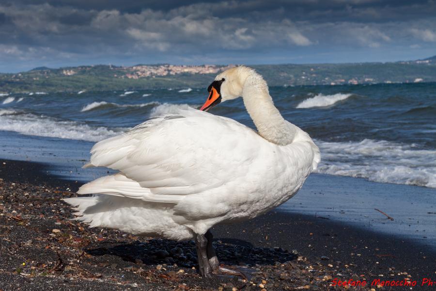 Vento sul lago (21 of 33)